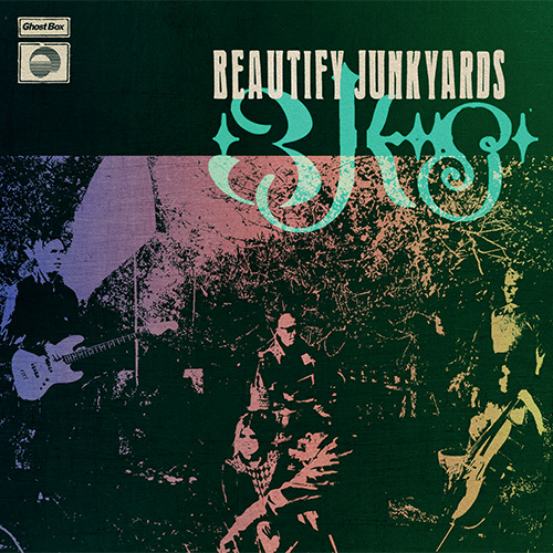The Invisible World of Beautify Junkyards cover
