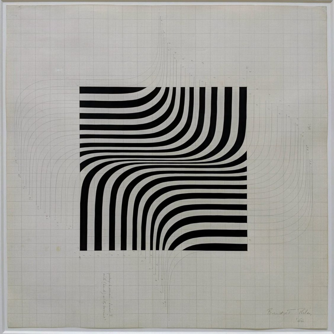 Bridget Riley study