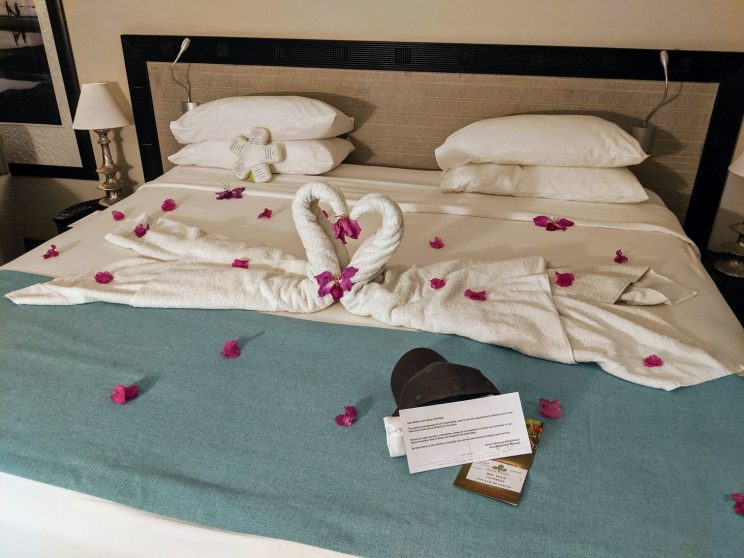 Our bed in the hotel room, with swan towels and petals