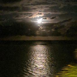Moonlight glistening on the ocean