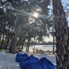 Sun slowly setting behind the trees on the beach