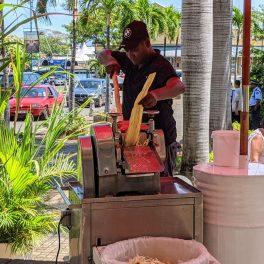 A man processing sugar cane to make a drink
